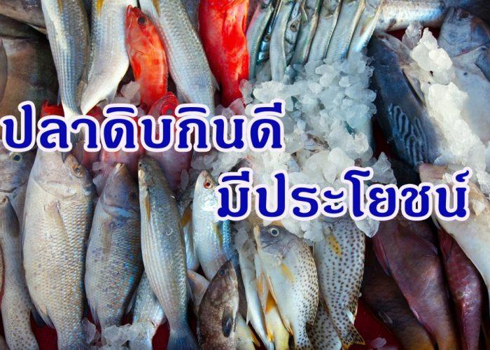 ปลาดิบกินดีมีประโยชน์